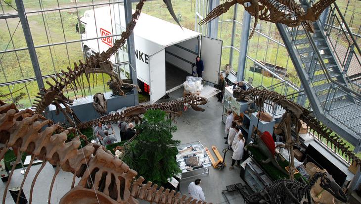 Die Dinoknochen werden direkt ins Museum geliefert; Bild: DB Schenker