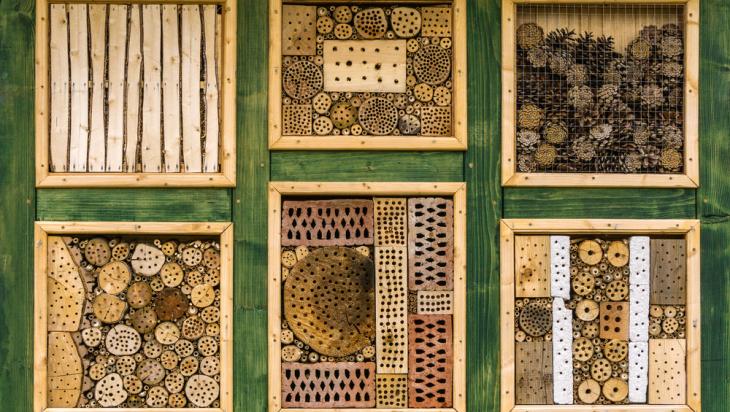 Insektenhotel / Bild: shutterstock.com/Lightboxx