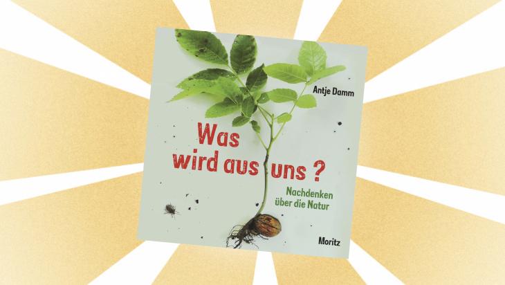 Kinderbuch: Was wird aus uns? Nachdenken über die Natur / Cover: Moritz Verlag