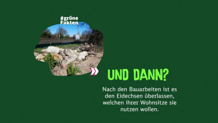 Wohnsitze Eidechsen; Bild: DB AG