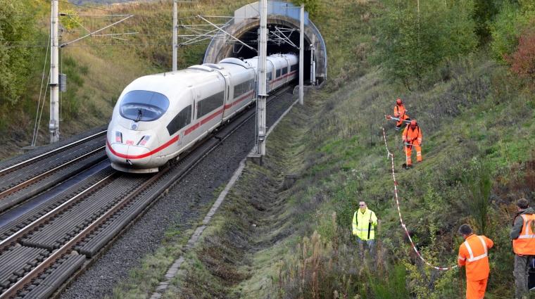 Die Förster achten darauf, dass die Bäum nicht anfällig für Krankheiten werden; Bild: DB AG/Volker Emersleben