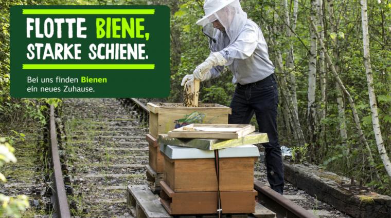 Ein Zuhause für Bienen; Bild: DB AG / Pablo Castagnola