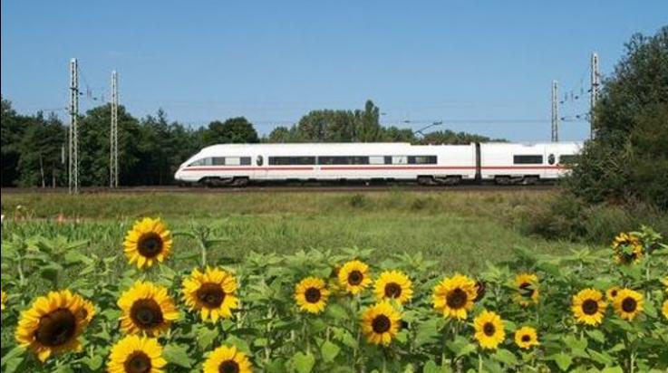 Die Deutsche Bahn ist Umwelt-Profi; Bild: Deutsche Bahn AG