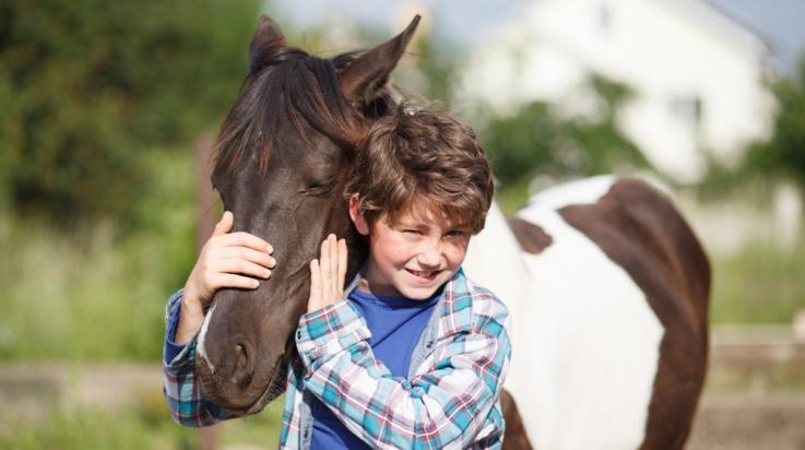 Kinder lieben Pferde! / Foto: shutterstock.com/Vasyl Syniuk